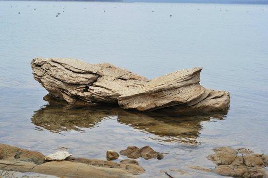Lake Murray State Park & Lodge : Water