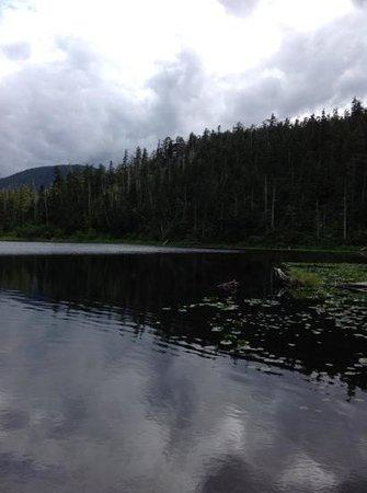 Heart Lake Trail : Heart lake