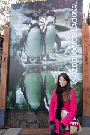 Parque Metropolitano: Zoo