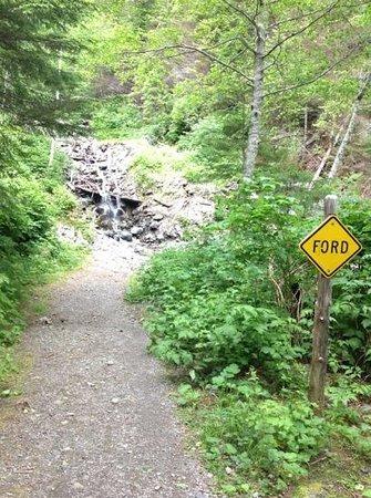 Heart Lake Trail : Forge Crossing