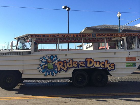 Ride The Ducks of San Francisco : The duck tour buses in sfo