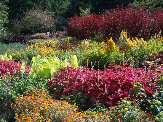Sarah P. Duke Gardens: So colorful!