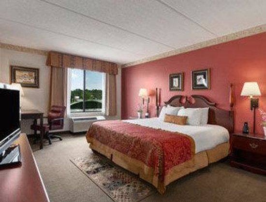 Wingate by Wyndham Greenville: Suite