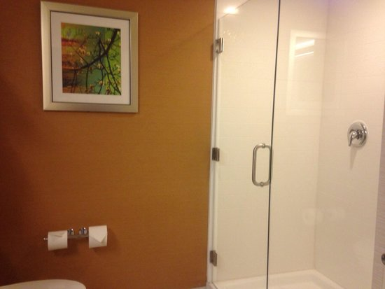 Fairfield Inn & Suites Atlanta Gwinnett Place : Large walk in shower. Unable fit it all in photo