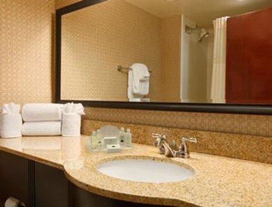 Wingate by Wyndham Rock Hill / Charlotte / Metro Area: Bathroom