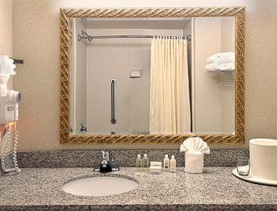 Wingate by Wyndham Atlanta Galleria Center: Bathroom