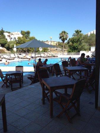 Aparthotel Ferrera Blanca: Pool next to restaurant