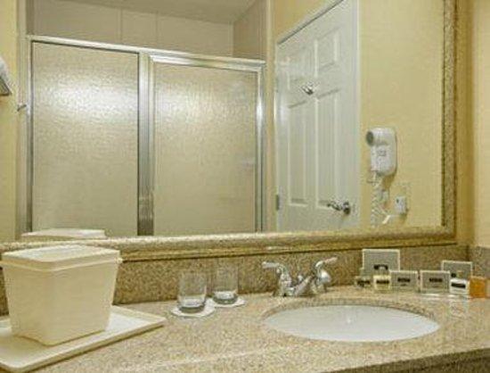 Wingate by Wyndham Bentonville Airport : Bathroom