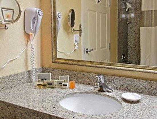 Wingate by Wyndham Panama City Area Lynn Haven: Bathroom