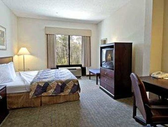 Wingate by Wyndham Destin : Standard King Bed Room