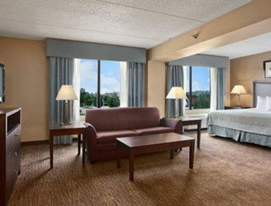 Wingate by Wyndham Fayetteville: Suite