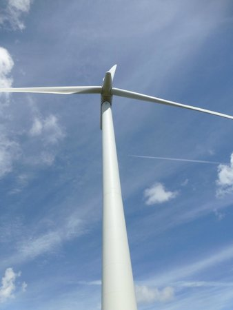 Whitelee Wind Farm Visitor Centre: look up