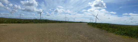 Whitelee Wind Farm Visitor Centre: panoramic shot