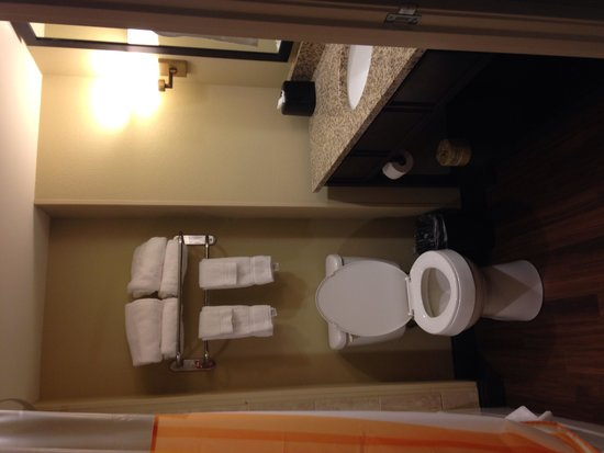 La Quinta Inn & Suites Pigeon Forge: Clean Bathroom