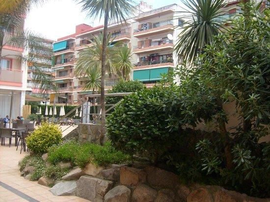 Sumus Hotel Monteplaya : Зеленая зона