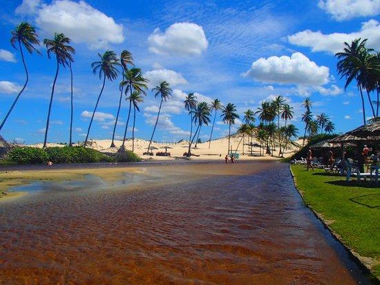 Barra De Punau