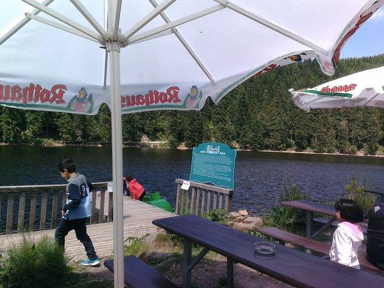 Mummelsee : The lake