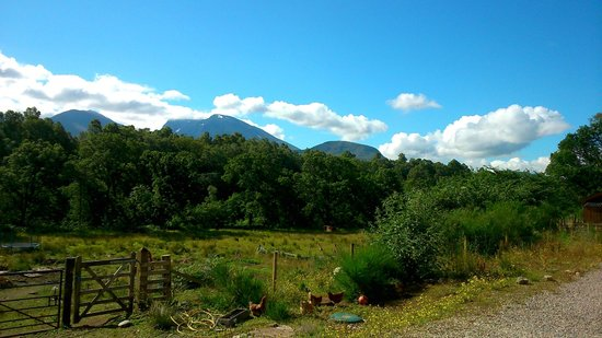 Torcastle House B&B: View of Ben Nevis