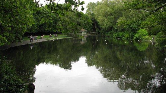 Parque St Stephen's Green: Pond and ducks