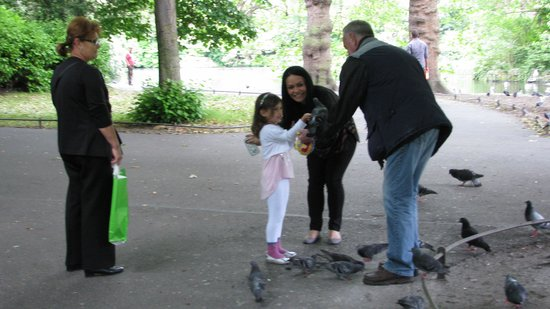 Parque St Stephen's Green: Feeding the pigeons!
