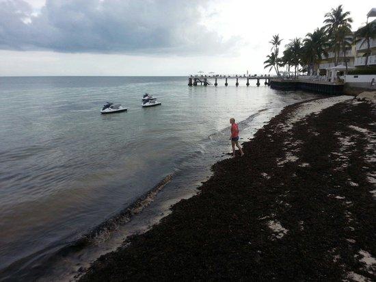 The Reach Key West, A Waldorf Astoria Resort: Half the beach
