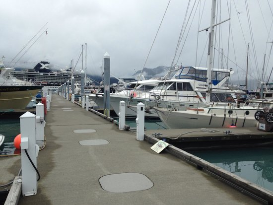 Seward Boat Harbor: Pier E