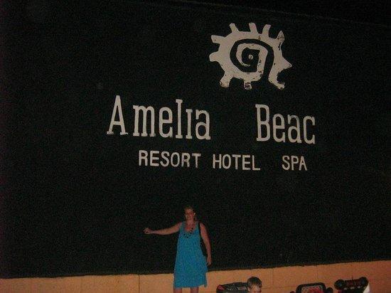 Amelia Beach Resort & Spa: Pool/Beach area