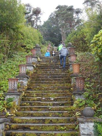 Bantry House & Garden: Bantry House - the Hundred+ steps WOW