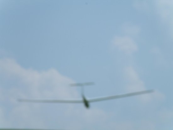 Harris Hill Soaring Center : Coming in for a landing by the over look