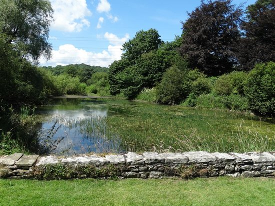 Kendal, UK: The mere