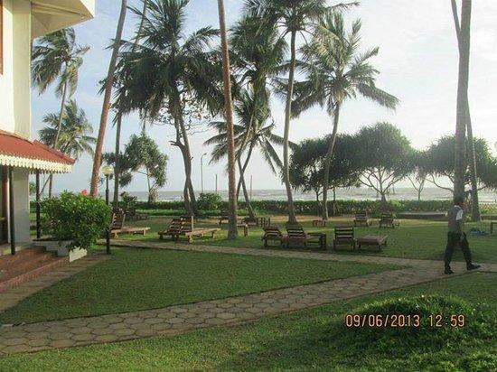 Tangerine Beach Hotel : Hotel grounds