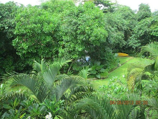 Tangerine Beach Hotel: Hotel grounds- view from balcony