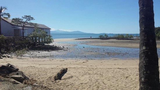 Pullman Port Douglas Sea Temple Resort & Spa : Port Douglas Marina