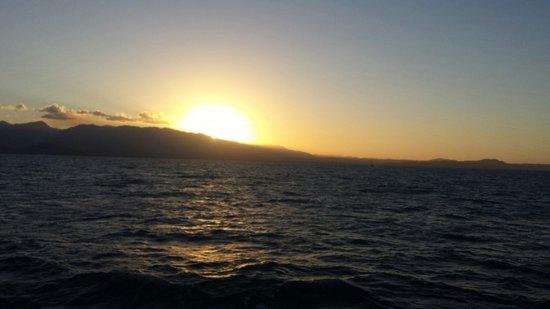 Pullman Port Douglas Sea Temple Resort & Spa : A sunset cruise on the big Cat Aquarius