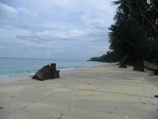 Freddies Santai Sumurtiga: Pantai pasir putih yang sepi dan tenang