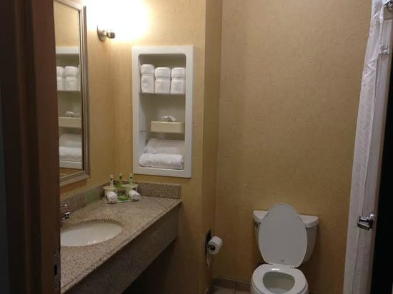 Holiday Inn Express Suites - Malvern: Bathroom
