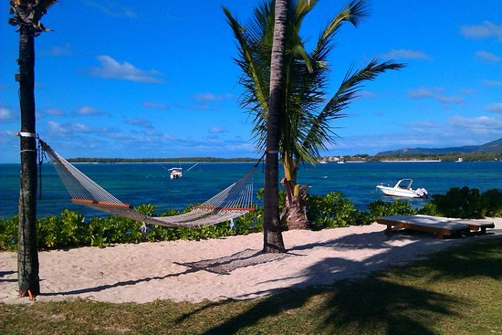 Tropical Attitude: sea view with hammock