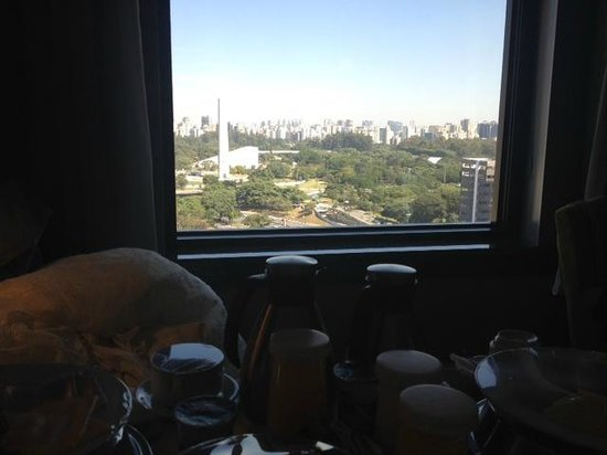 Pullman Sao Paulo Ibirapuera: Vista do quarto