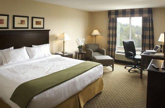 Holiday Inn Express Hotel & Suites Huntsville : King Leisure Room