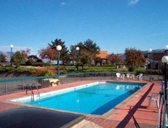 Panorama City Centre Inn: Outdoor Heated Pool
