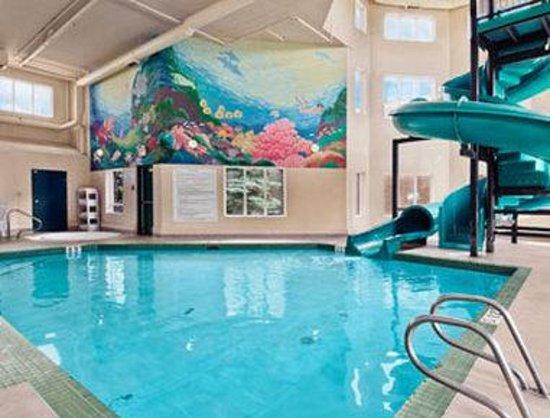 Super 8 Edmonton South: Pool