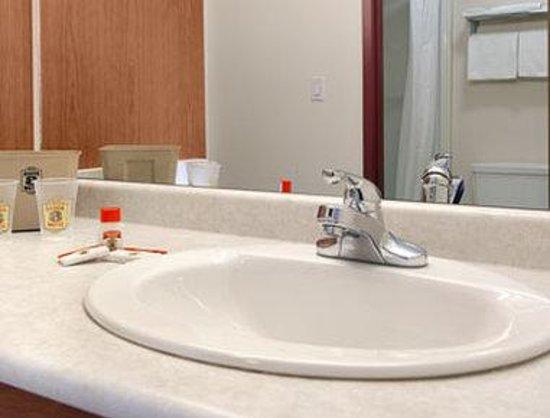Super 8 Edmonton/West : Bathroom