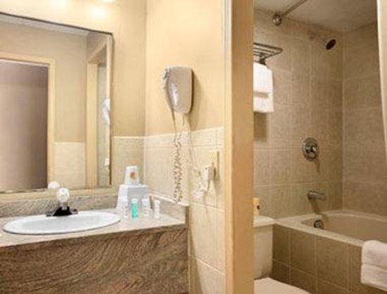 Super 8 Cambridge/Kitchener/Waterloo Area: Bathroom