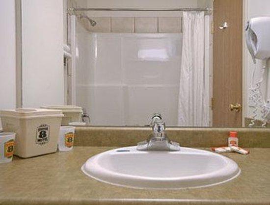 Super 8 Langley / Aldergrove: Bathroom