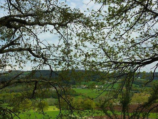 Camino de Santiago: Naturaleza del camino