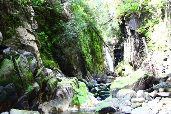 Great Bear Lodge: Pirate's cove waterfall