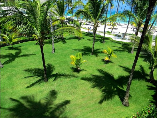Barcelo Bavaro Palace : view from the room