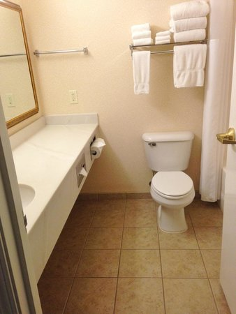Country Inn & Suites By Carlson, Indianapolis Airport South: Clean bathroom