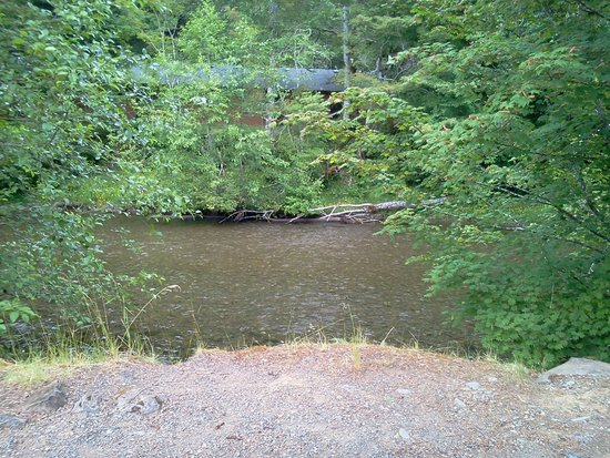 Sol Duc Hot Springs Resort: view from swing next to river