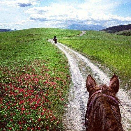 Albergo di Murlo : Itinerari a cavallo